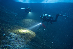 Scientific scuba divers use bright lights and cover lots of terrain in search for pycnogonids to collect. Turtle Rock, Antarctica. Photo by Timothy R. Dwyer.