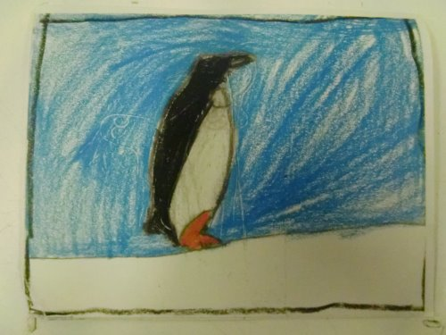 Another penguin postcard