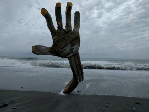 Drift wood Hand