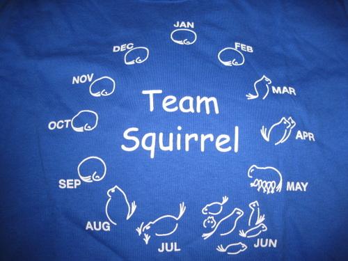 Team Squirrel shirt