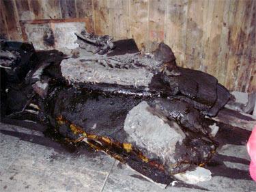 seal carcass