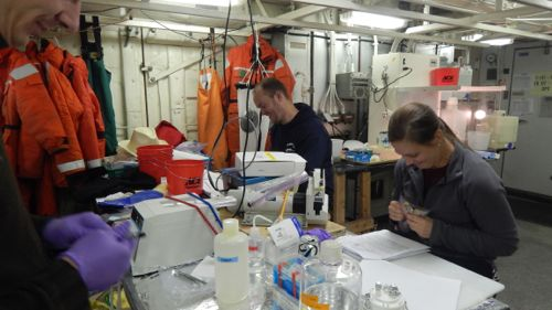 Karen working on samples