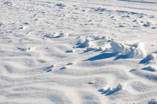 January 20: Close-up of the South Pole's frozen surface.