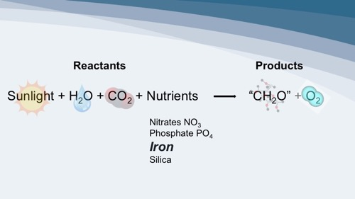 Overview of photosynthesis and some required nutrients