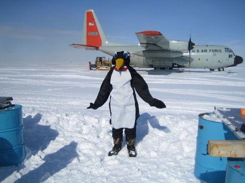 Penguin's going home!