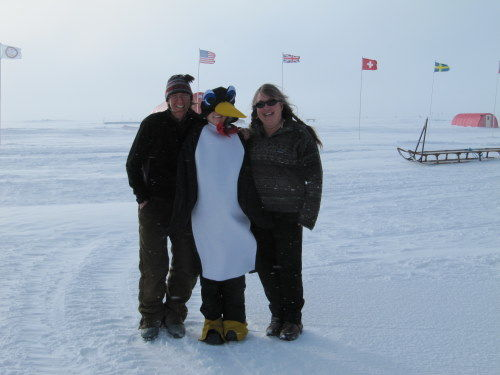 Penguin Hangs Out with Friends
