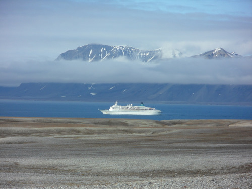 A cruise ship passes by in the fjord.