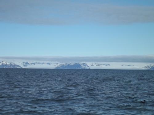 Tidewater Glaciers