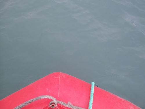 View into the water from boat
