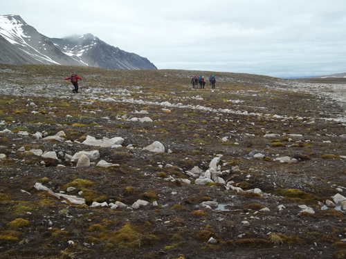Rows of angular clasts