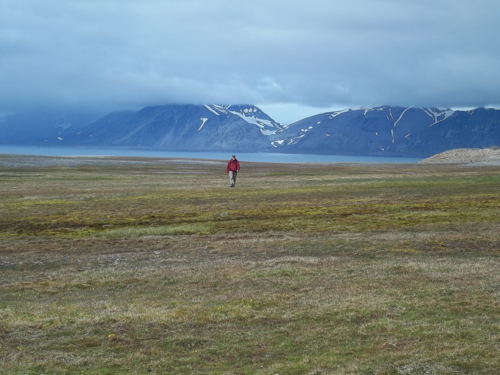 Mike strides across the tundra...