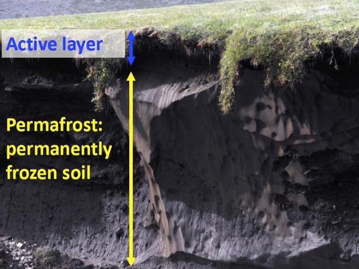 Permafrost Cross-Section