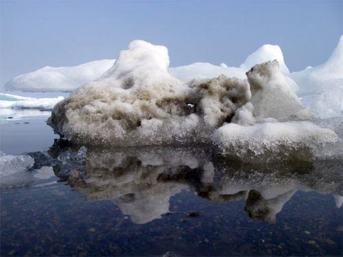 6 August 2008 Back in the Driftwood – Iceberg Day!! | PolarTREC