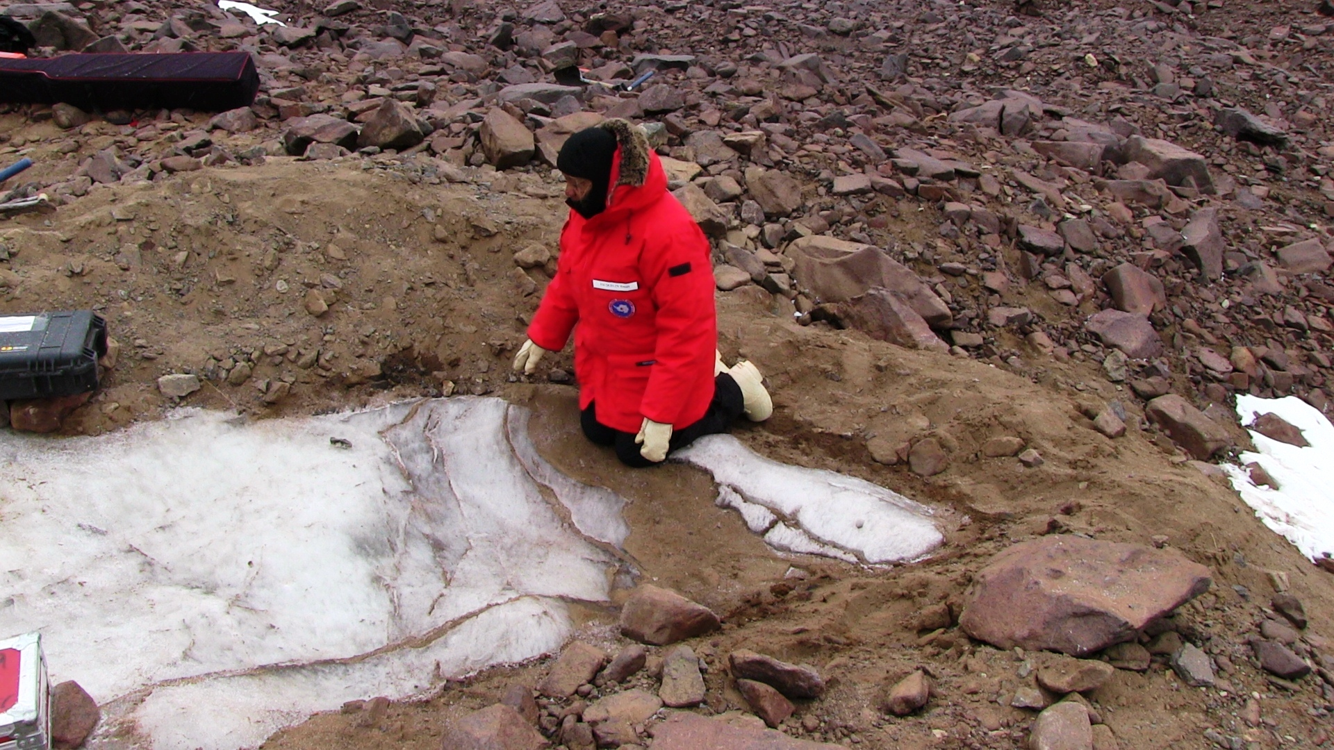 Jackie Hams examines buried ice.