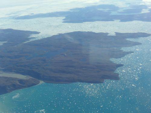 Fiord with icebergs