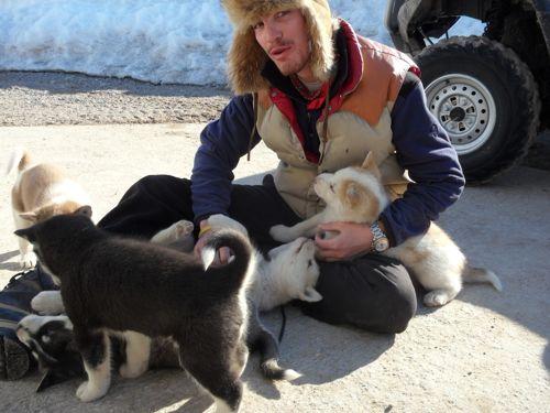 Simon with husky puppies.