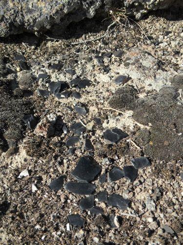 Obsidian flakes
