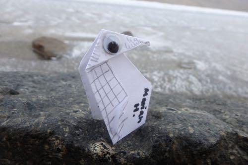 Utah Penguin.