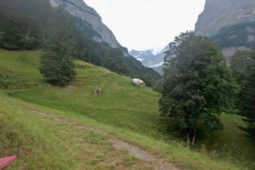 Grindelwald Trails 1