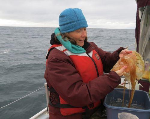 Life jackets on the R/V Ukpik.  Beaufort Sea. Transect 6