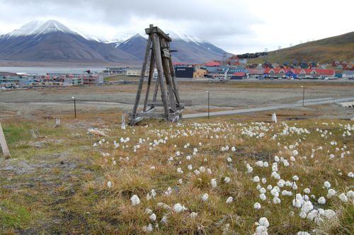 Lonyearbyen
