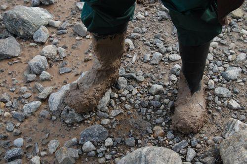Liz's boots