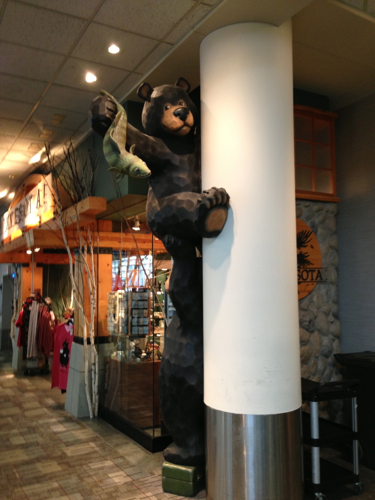 Minnesota Bear