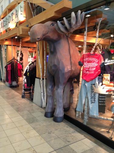 Minnesota Moose