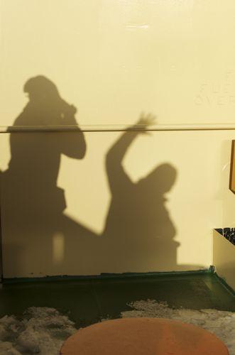 Shadows on the Gould