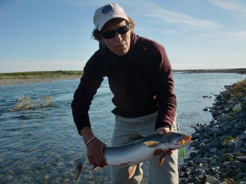steve's fish