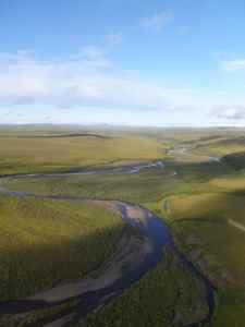 tundra view