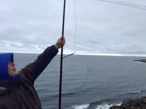 Extending the net