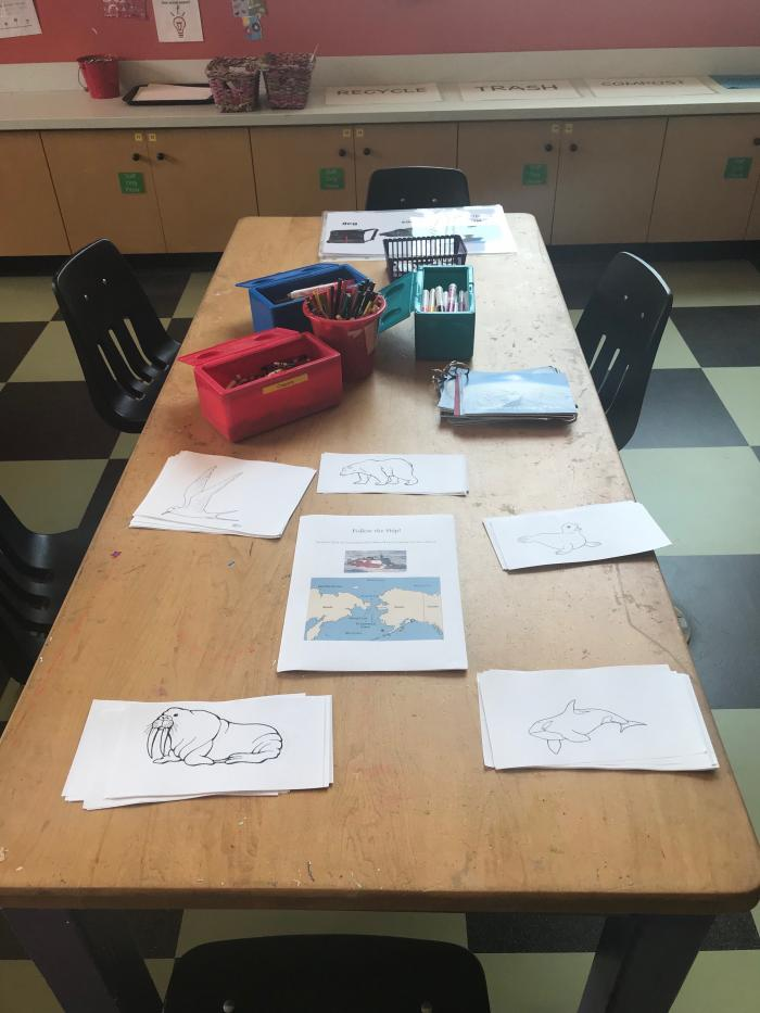 Polar Animals Activity