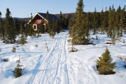 The cabin near Healy, Alaska in winter. Photo by John Wood.
