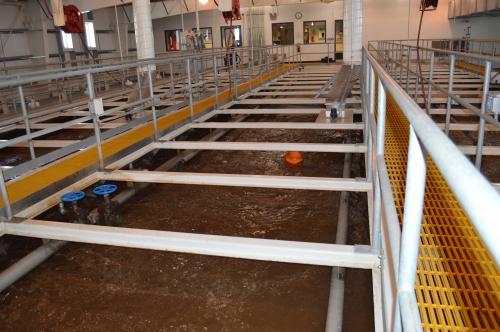 Main basin