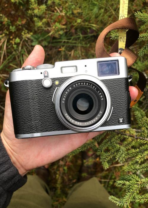 Fuji camera in field