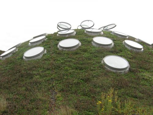 Environmentally Friendly Roof