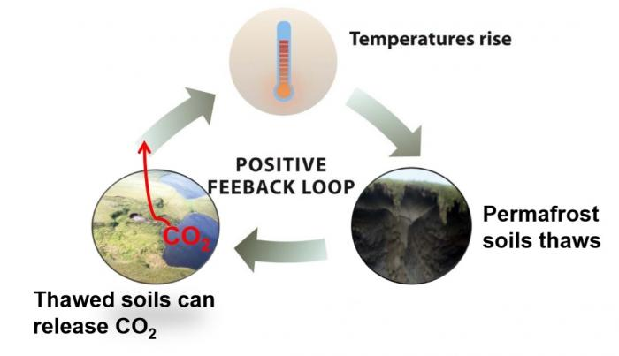 Permafrost Positive Feedback Loop