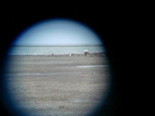 These photos were taken with the camera through binoculars!
