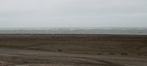 There is NOT supposed to be surf in the Arctic Ocean!