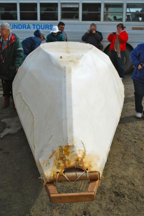 Sealskin boat