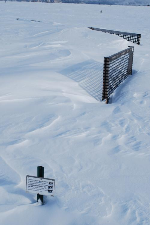 The snow fence at work