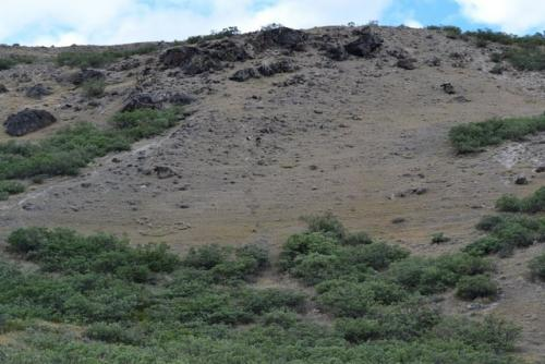 Evidence of permafrost
