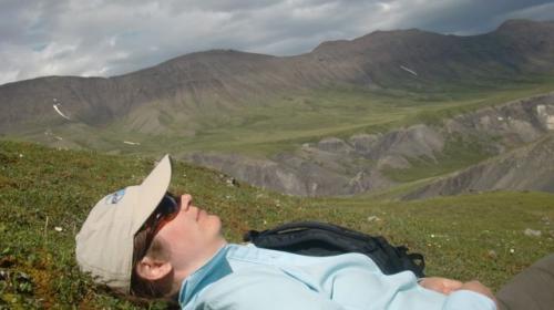 Tundra nap