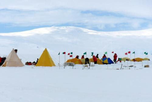 Variety of shelters during Happy Camper.