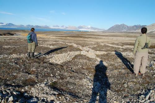 permafrost rock sorting