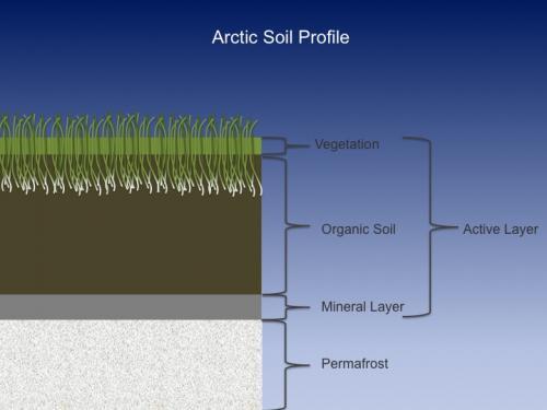 3 July 2016 Soil Samples