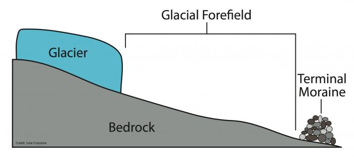 figure_6_glacier_diagram