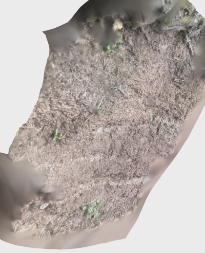 3D rendered image of geologic outcrop.