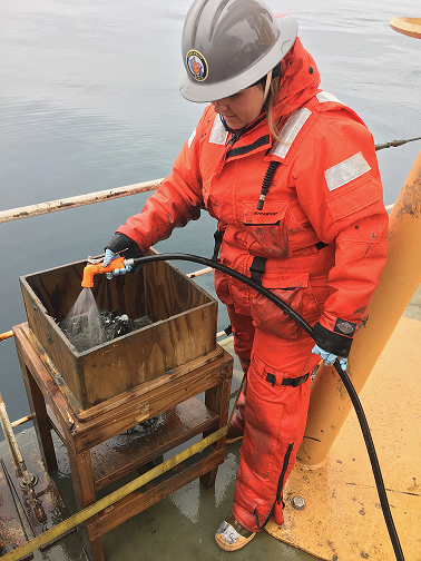Piper Bartlett-Browne processing mud in a sieve on the deck of the USCGC Healy. (Photo courtesy of Nicole Villeneuve)